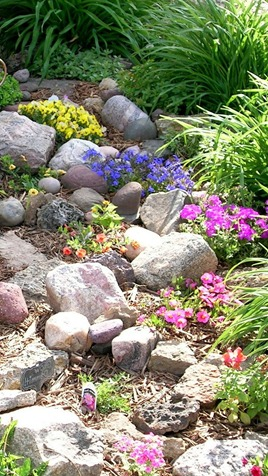 Setting Up A Rock Garden